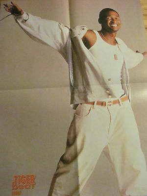 Usher, P!nk, Pink, Double Four Page Foldout Poster