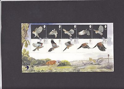 2003 Birds of Prey Hawk and Owl Trust Covercraft Official FDC