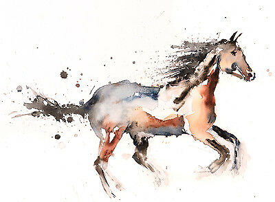 Horse No.2 - Signed limited Edition Print from original watercolour painting