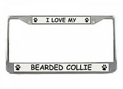 I Love My Bearded Collie Chrome License Plate Frame