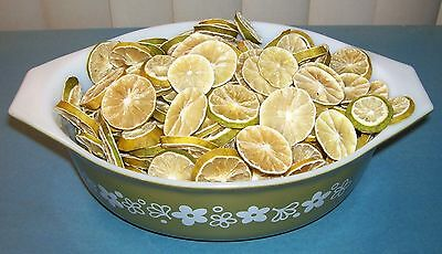 Dried Key Lime Slices***dehydrated Key Lime Slices ***12 Slices***