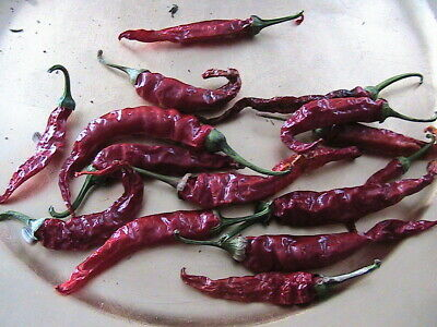 10 Pepper Seeds  -You Choose from the Toggle List