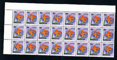 1976 RHODESIA 16c PIMPERNEL Def  flower block of 24 SG 502 1st JULY 1976