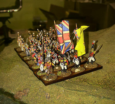 28mm British Line Infantry Metal Napoleonic Painted & Based with command