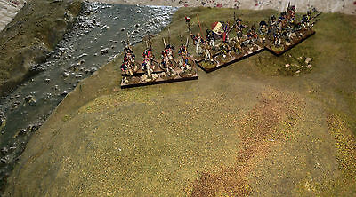28mm French Metal Napoleonic Painted & Based Infantry (24)