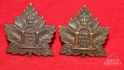 WW1 CEF, Canadian Army Dental Corps, Collar Badge Pair.  OFFICERS  (Inv8439)