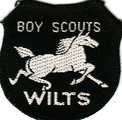 Boy Scout Badge 1950/60`s WILTSHIRE County