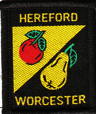 Boy Scout Badge HEREFORD WORCESTER County 2003 Issue