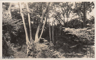 Postcard Lydney Gloucestershire view of woods named Devil's Chapel RP