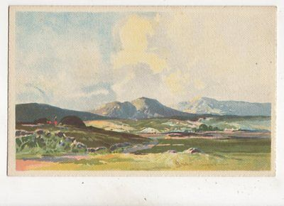 The Hills Of Donegal Ireland by Maurice Wilks Vintage Art Postcard 377b