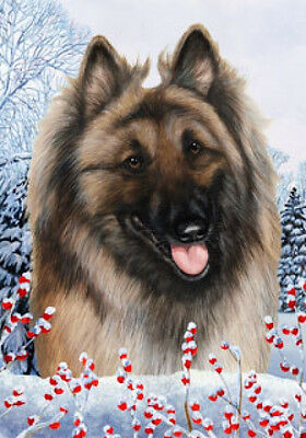 Large Indoor/Outdoor Winter Flag - Belgian Tervuren 15083