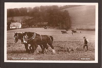 "Rural/Agriculture. Heavy Horses Ploughing. ""Toilers of the Land"". RP."