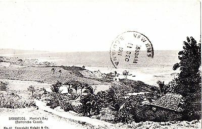 Great Barbados p/c Martin's Bay.  Posted 1911. Pub.Knight & Co