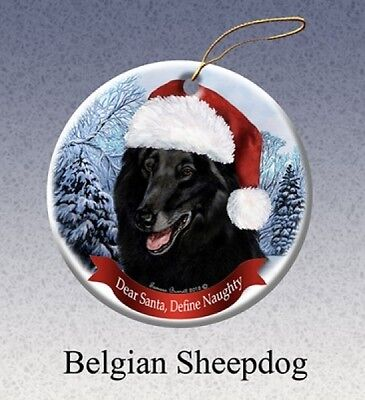 Dear Santa Define Naughty Ornament - Belgian Sheepdog HO017