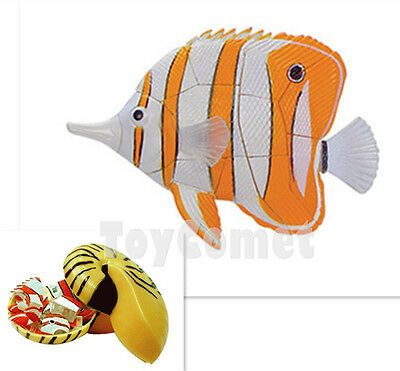 Copperband Butterfly Fish Coral Fish Animal Part I 4D 3D Puzzle Model Kit Toy