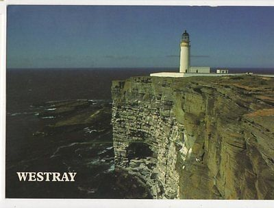 Noup Head Westray Orkney 1993 Scotland Postcard 339a ^