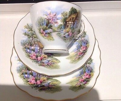 VINTAGE 60s ROYAL VALE BONE CHINA ENGLISH COUNTRY GARDEN COTTAGE TRIO