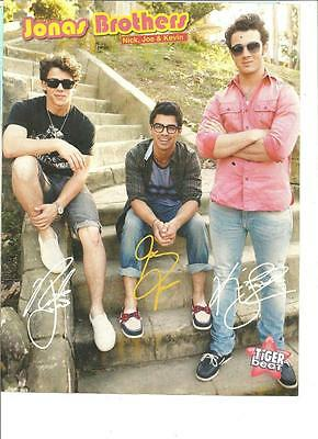 The Jonas Brothers, Taylor Lautner, Double Sided Full Page Pinup