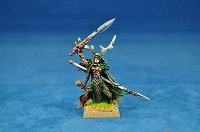 Warhammer Primed wood elf lord with sword and spea