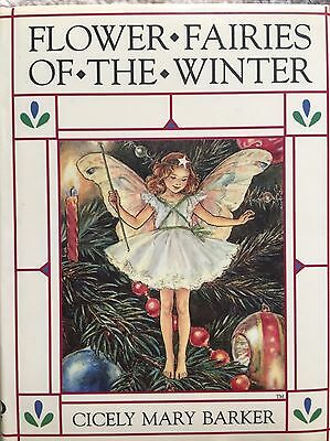 Beautiful Flower Fairies Of The Winter Book In Vgc