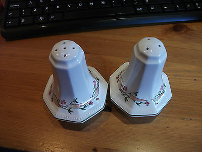 Johnson Brothers Eternal Beau Salt & Pepper Shaker Vgc Seals Good
