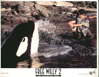 Free Willy 2 The Adventure Home 11x14 Lobby Card #nn