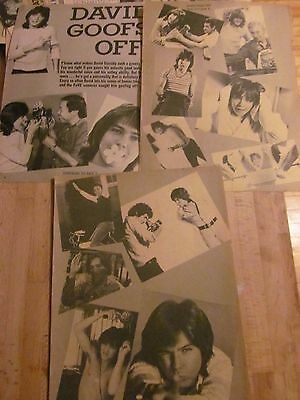 David Cassidy, Three Page Vintage Clipping