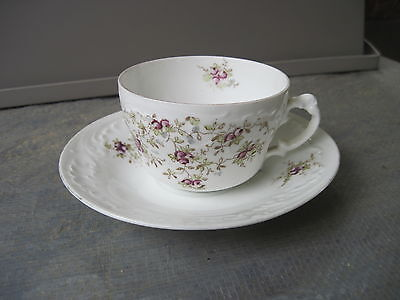 Carlsbad China Teacup & Saucer.. Made in Austria..