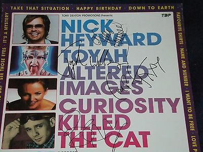 Toyah,nick Heyward,altered Images, Curiosity Killed The Cat Signed Poster