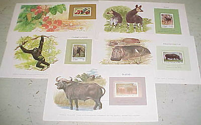 Congo France 5 Diff. Picture Cards With Stamps