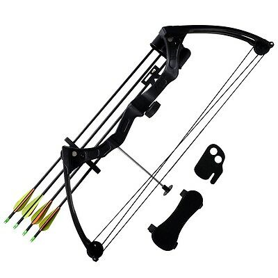 """New Youth Archery Compound Bow 27"""" 15-20 lb with Accessories Aluminium Arrows"""
