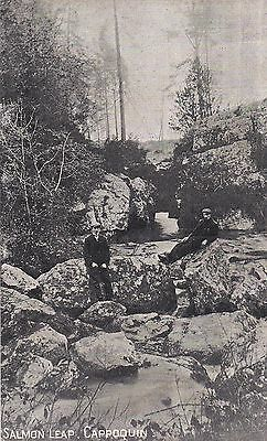 1 irish postcard ireland waterford the salmon leap cappoquin
