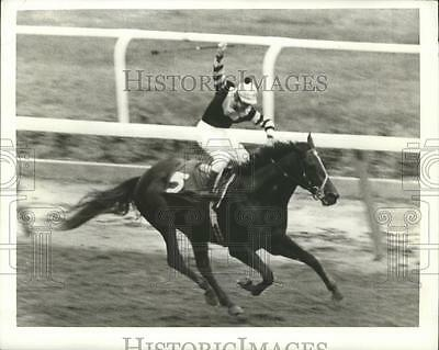 1977 Press Photo Seattle Slew wins 109th Belmont Stakes and Triple Crown