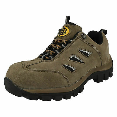 WHOLESALE Mens Safety Shoes / Sizes 7x12 / 10 Pairs / A2051
