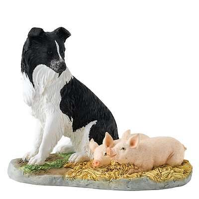 Border Fine Arts Sleeping Babes Border Collie Dog & Piglets Figurine New A27057