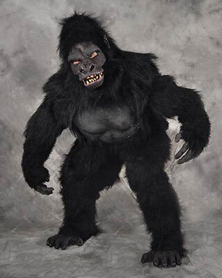 Professional Gorilla Ape Adult Halloween Costume Suit  Mask Hands Feet See Video