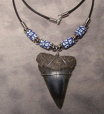 """Huge 2 1/16"""" Mako Shark Tooth Teeth Necklace Fossil Jaw Megalodon Fishing"""