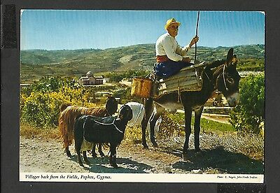 John Hinde Colour Postcard Villager Back from the Fields Paphos Cyprus Unposted