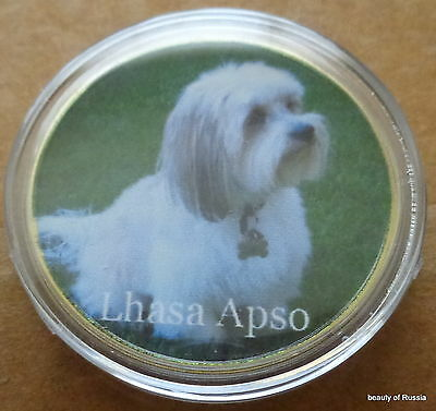 Dog  Lhasa Apso    24K GOLD  PLATED 40 mm   COIN