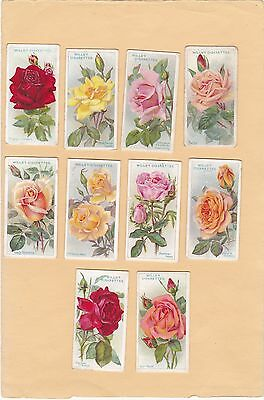 Wills.full Set 50 Cards From  Roses. Cat £80.00.  Issued 1912