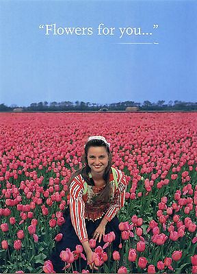 Klm - Flowers For You - Airline Issue Postcard