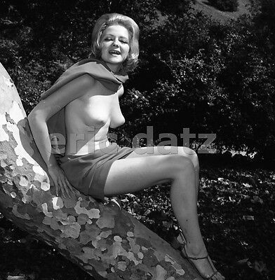1960's Ron Vogel Negative, sexy nude pin-up girl Mary Locklin, t910927