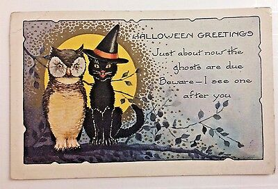 Antique/ Vintage 1906 Halloween Greetings Postcard,owl & Cat With Hat Full Moon