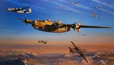 Nicolas Trudgian Print END GAME B-24 Me262 Signed TEN USAAF veterans