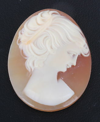 Cameo Unmounted Carved From Shell 0583B