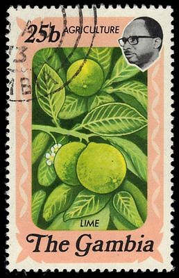 """GAMBIA 291 (SG305) - Agriculture """"Lime Fruits"""" (pa79076)"""