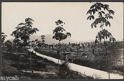 Postcard Singapore cattle cart on road on Rubber Estate RP