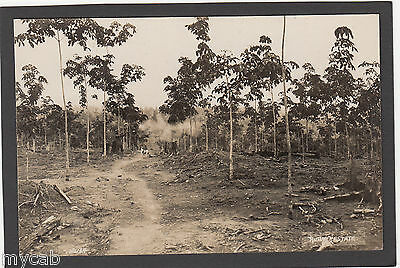 Postcard Malaysia Rubber Estate old RP early