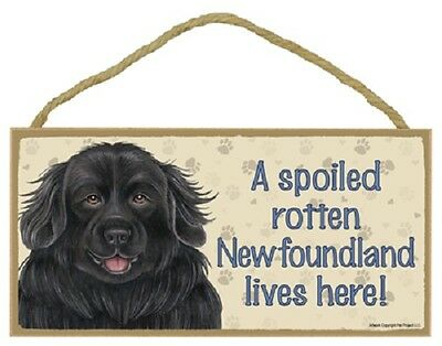 NEWFOUNDLAND A Spoiled Rotten DOG SIGN wood HANGING WALL PLAQUE black puppy NEW