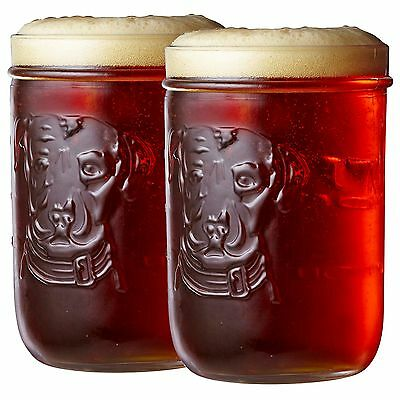 Set of 2 - Lagunitas 16 oz Craft Beer Pint Glasses Large Mouth Mason Jars